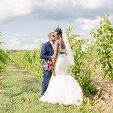Willow Springs Winery Wedding 10